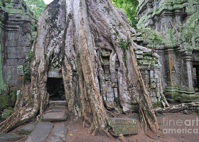 Angkor Greeting Card featuring the photograph Tree Roots On Ruins At Angkor Wat by Sami Sarkis