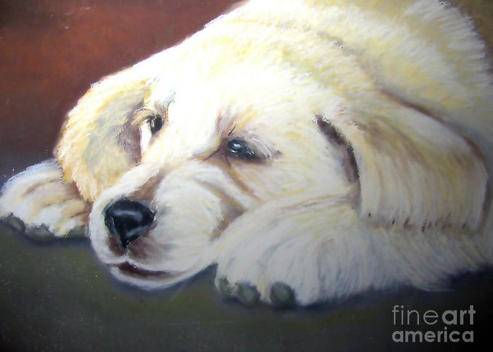 Dog Greeting Card featuring the pastel Tuckered Out by Amber Nissen
