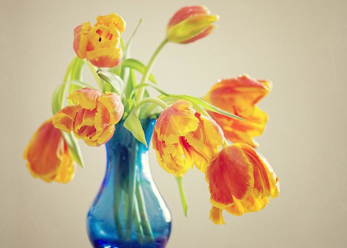 Tulpe Greeting Card featuring the pyrography Tulip by Steffen Gierok