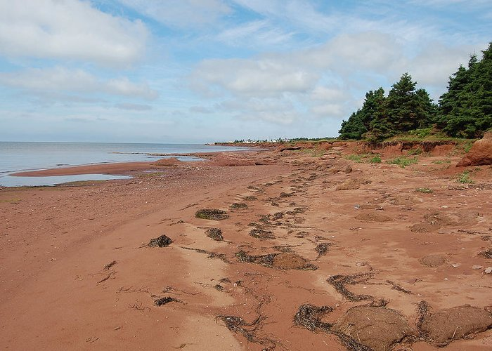 Prince Edward Island Greeting Card featuring the photograph Union Corner Provincial Park by Colleen English