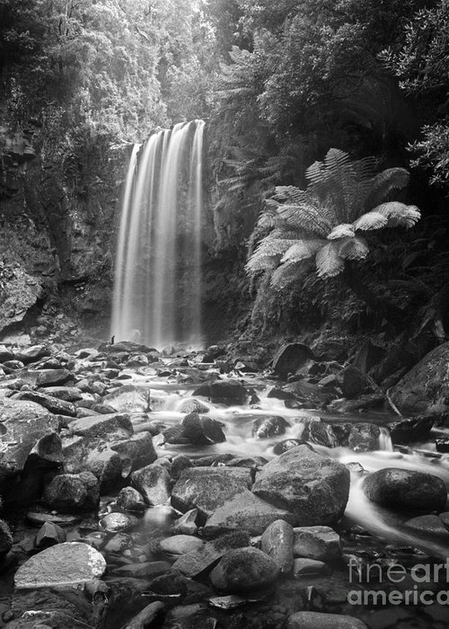 Black & White Greeting Card featuring the photograph Waterfall 09 by Colin and Linda McKie