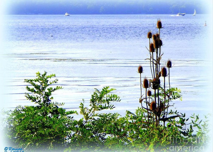 Waterscape Greeting Card featuring the photograph Waters Edge by Rennae Christman