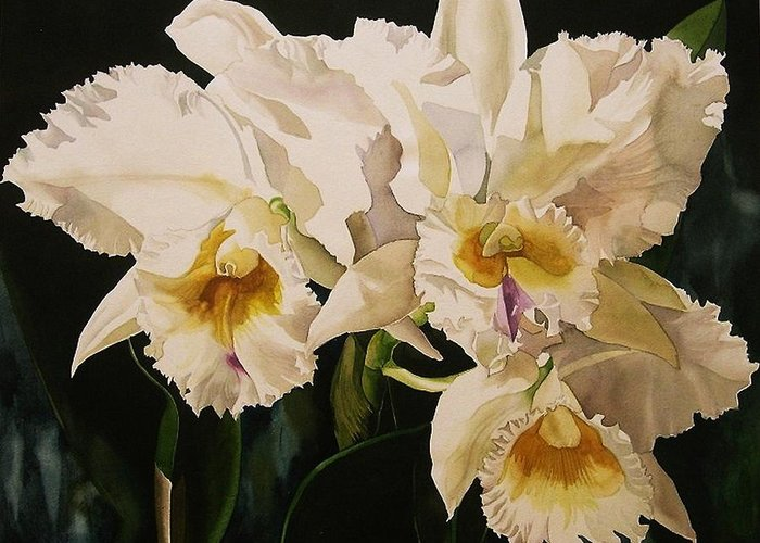 Orchid Greeting Card featuring the painting White Cattleya Orchids by Alfred Ng