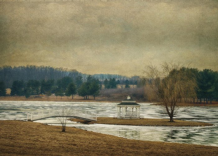 Willow Lake Greeting Card featuring the photograph Willow Lake by Kathy Jennings
