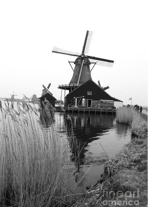 Wind Mill Greeting Card featuring the photograph Wind Mill by Sarka Olehlova