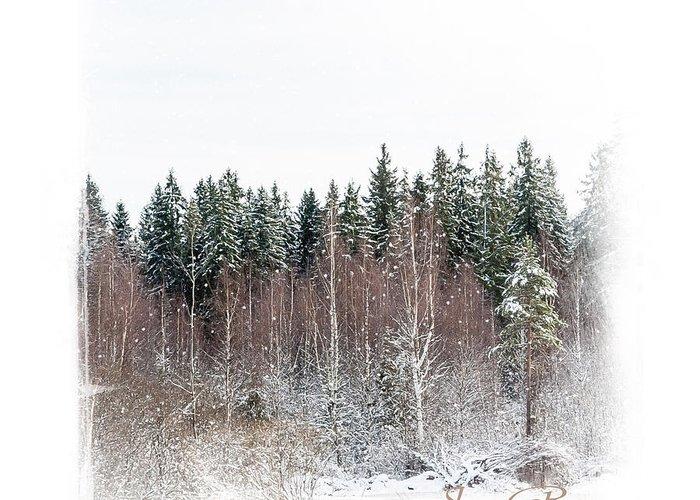 Winter Greeting Card featuring the photograph Winter Wonderland. Elegant Knickknacks From Jennyrainbow by Jenny Rainbow