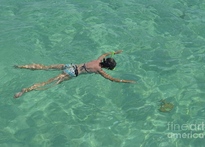 People Greeting Card featuring the photograph Woman Snorkeling By Turquoise Sea by Sami Sarkis