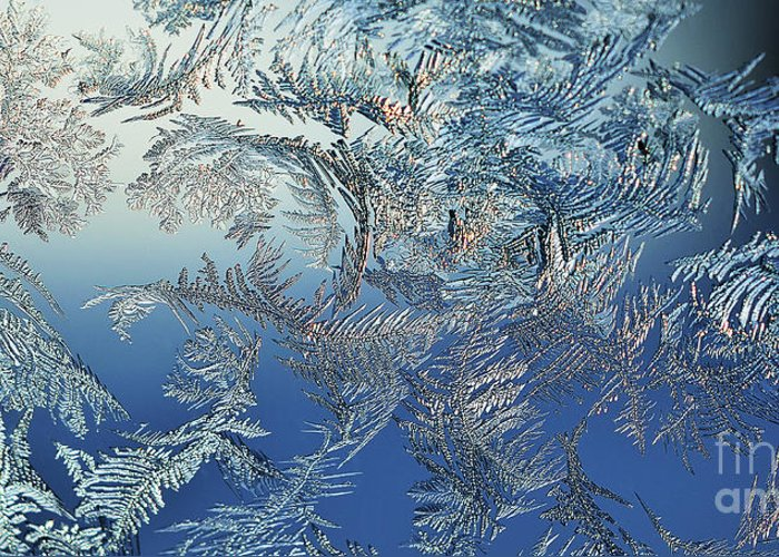 Frost Greeting Card featuring the photograph Frost On A Windowpane by Thomas R Fletcher