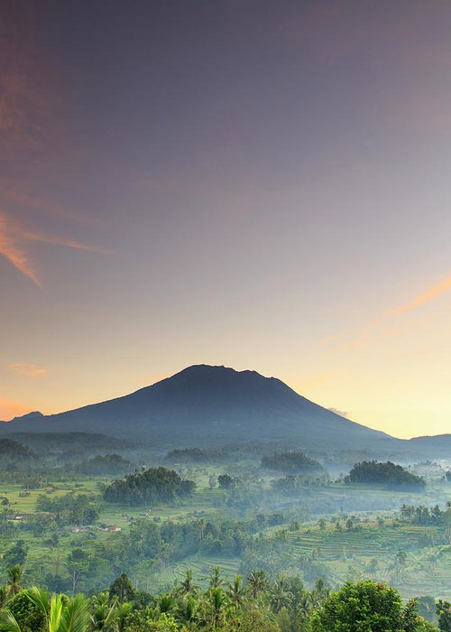 Scenics Greeting Card featuring the photograph Indonesia, Bali, Rice Fields And by Michele Falzone