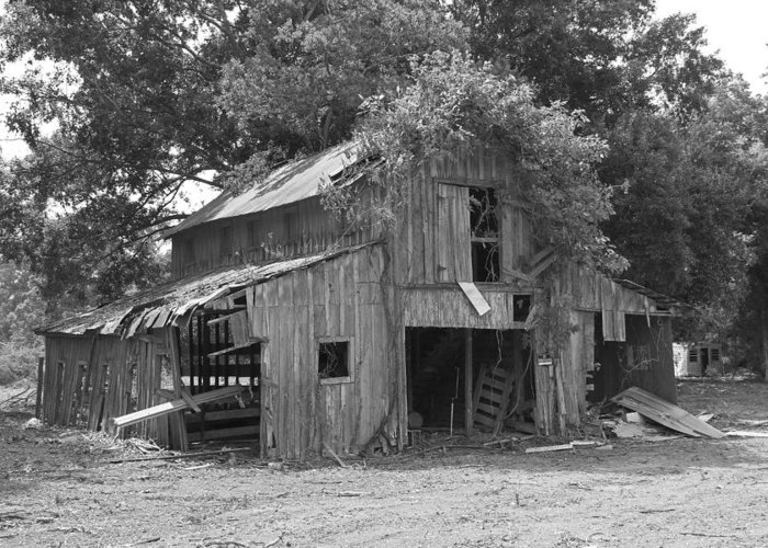 Barn Greeting Card featuring the photograph Old Barn by Ronald Olivier