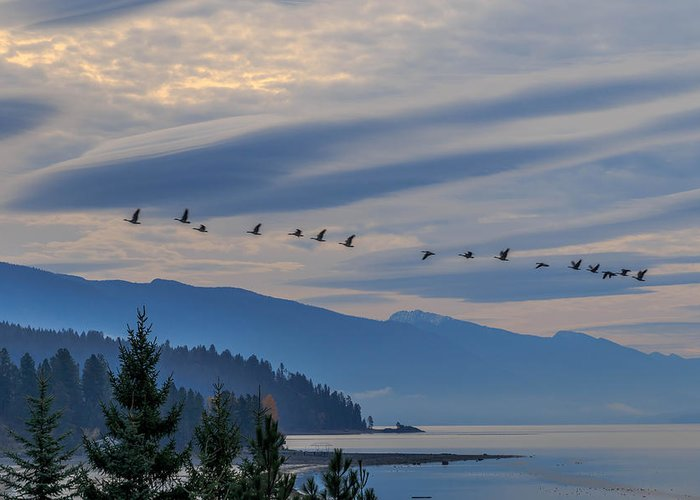 Lake Pend Oreille Greeting Card featuring the photograph 11-06-2014 by Kirk Miller