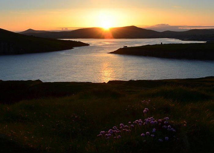 Sunset Greeting Card featuring the photograph Dingle Sunset by Barbara Walsh