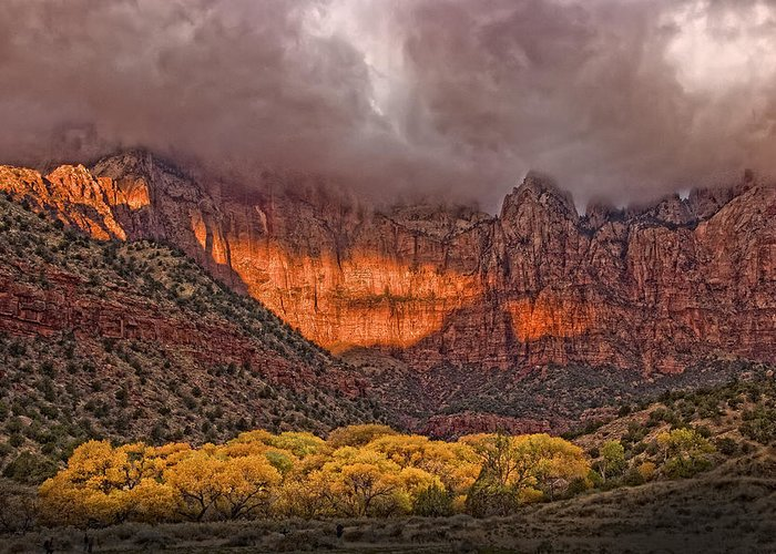 Zion National Park Greeting Card featuring the photograph Zion National Park Utah by Douglas Pulsipher