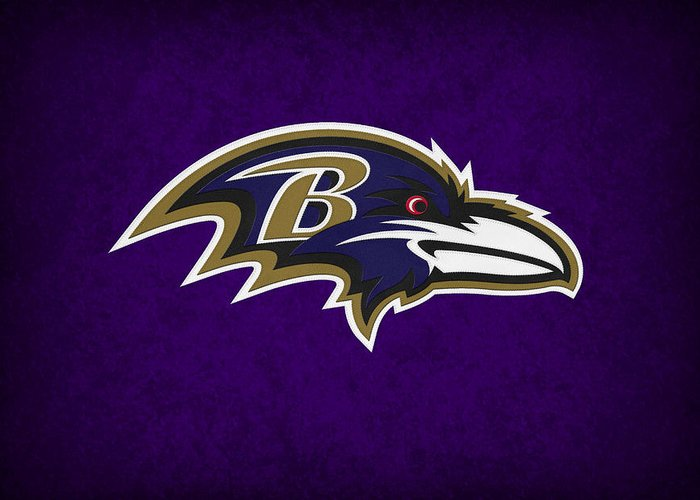 Ravens Greeting Card featuring the photograph Baltimore Ravens by Joe Hamilton