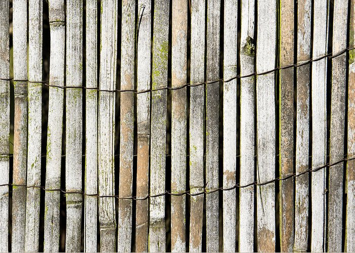 Abstract Greeting Card featuring the photograph Wood Background by Tom Gowanlock