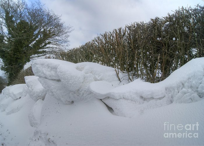 Snow Greeting Card featuring the photograph Drift 17 by David Birchall