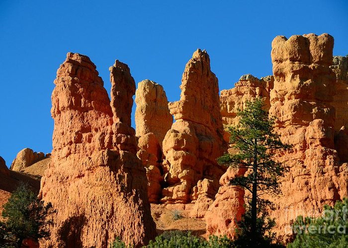 Red Canyon Greeting Card featuring the photograph Red Canyon by Marc Bittan