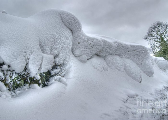 Snow Greeting Card featuring the photograph Drift 14 by David Birchall