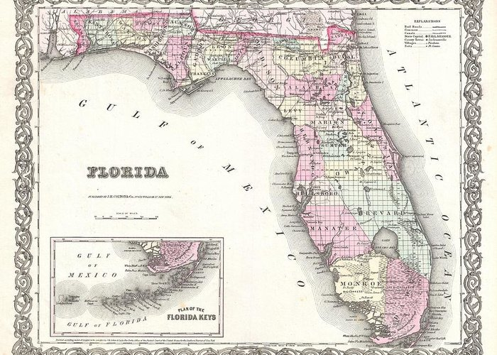 Greeting Card featuring the photograph 1855 Colton Map Of Florida by Paul Fearn