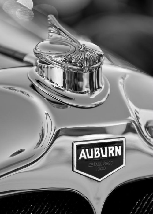 1929 Auburn 8-90 Speedster Greeting Card featuring the photograph 1929 Auburn 8-90 Speedster Hood Ornament 2 by Jill Reger
