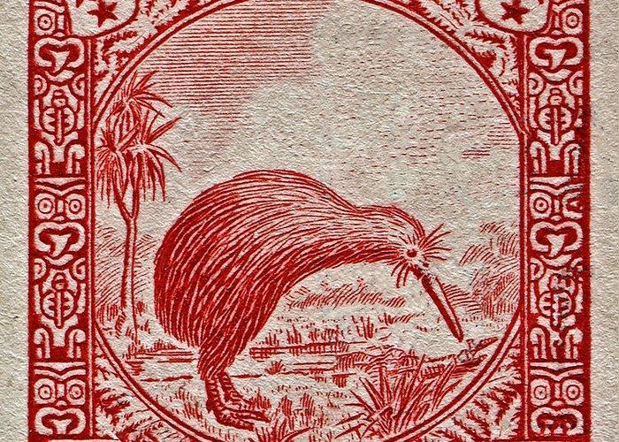 1936 new zealand kiwi stamp greeting card for salebill