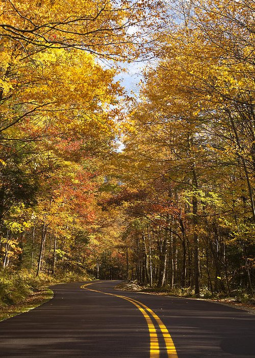 Road Greeting Card featuring the photograph Autumn Drive by Andrew Soundarajan