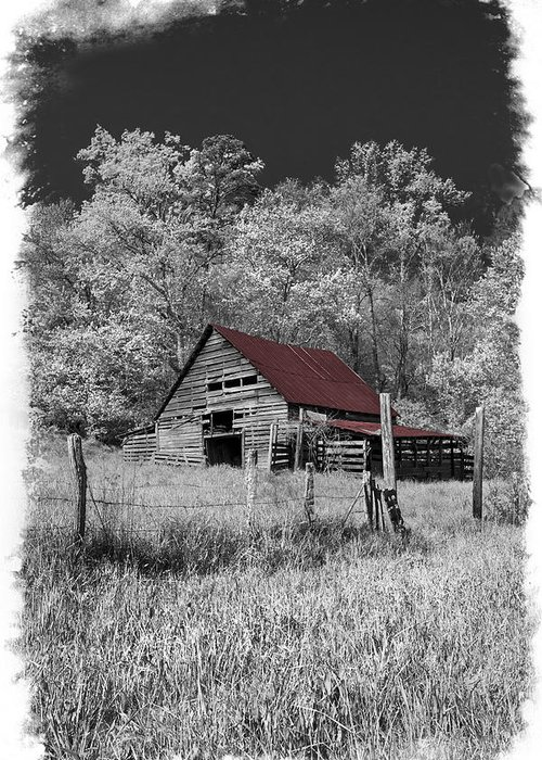 Appalachia Greeting Card featuring the photograph Big Red by Debra and Dave Vanderlaan