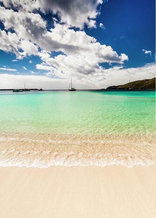 Tropical Tree Greeting Card featuring the photograph Caribbean Beach by Guvendemir