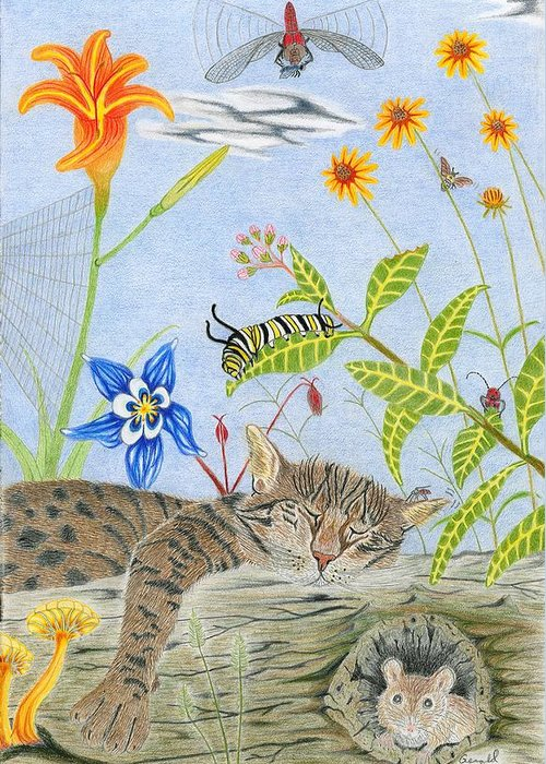 Cat And Mouse Greeting Card featuring the drawing Cat And Mouse by Gerald Strine