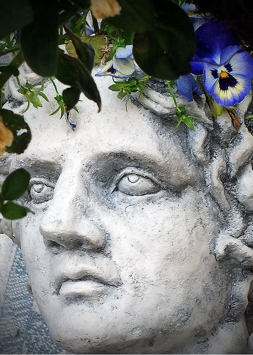 Garden Greeting Card featuring the photograph Cobalt Blue by William Walker