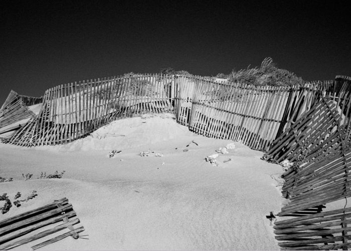 Olympus Greeting Card featuring the photograph Fences by Luis Esteves