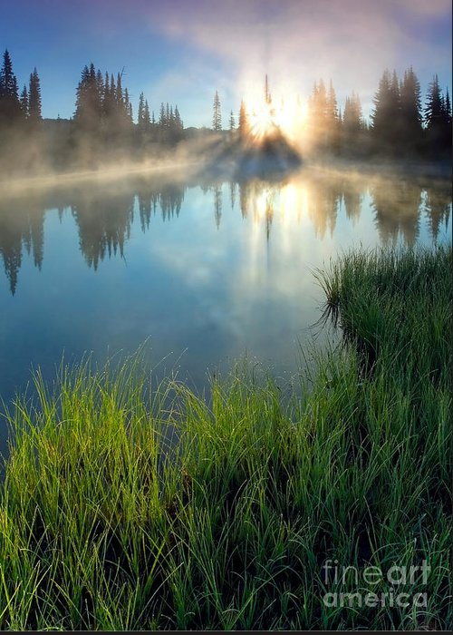 Fog Greeting Card featuring the photograph First Light by Mike Dawson
