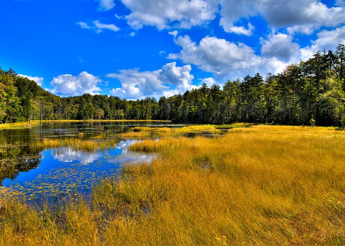 Fly Pond Greeting Card featuring the photograph Fly Pond In The Adirondacks by David Patterson