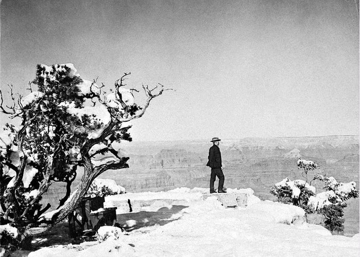1906 Greeting Card featuring the photograph Grand Canyon: Sightseer by Granger