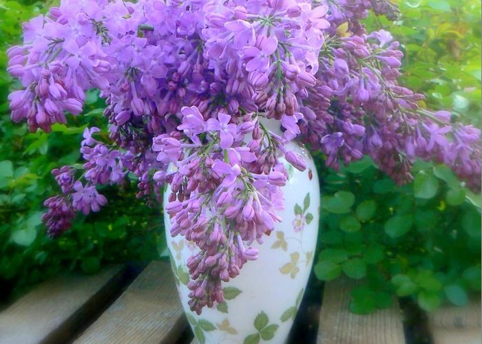 Lilacs Greeting Card featuring the photograph Lilacs by Diana Besser