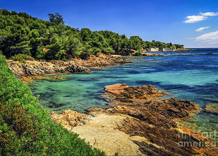 Cote Greeting Card featuring the photograph Mediterranean Coast Of French Riviera by Elena Elisseeva