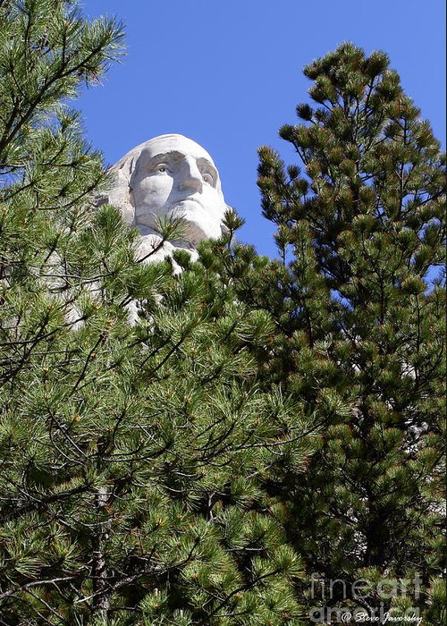 Mt. Rushmore Greeting Card featuring the photograph Mt. Rushmore by Steve Javorsky