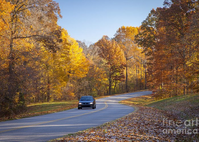 America Greeting Card featuring the photograph Natchez Trace by Brian Jannsen