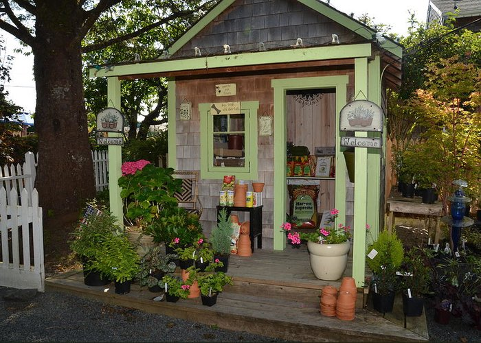 Shed Greeting Card featuring the photograph Potting Shed by Chuck Overton