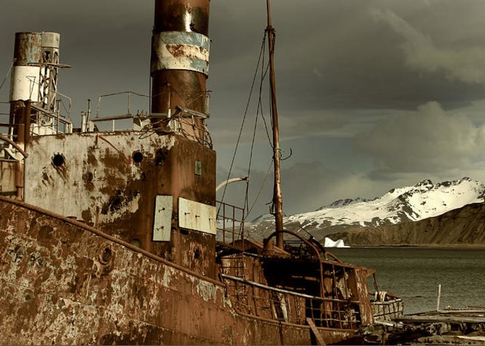 Grytviken Greeting Card featuring the photograph Rusted Whaling Boats by Amanda Stadther