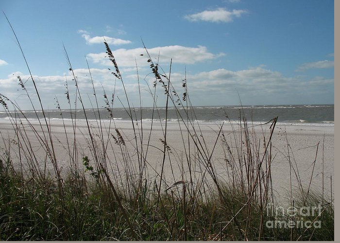 Seaside Greeting Card featuring the photograph Seaside by Christiane Schulze Art And Photography