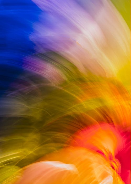 Abstract Flower Greeting Card featuring the photograph Summer Bloom by Jon Glaser