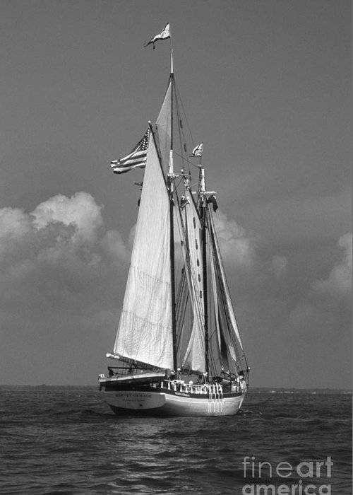Sailing Gear Greeting Card featuring the photograph Tall Ship Harvey Gamage by Skip Willits