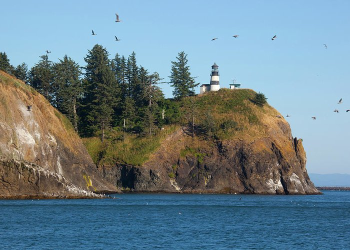 Cape Disappointment Greeting Cards