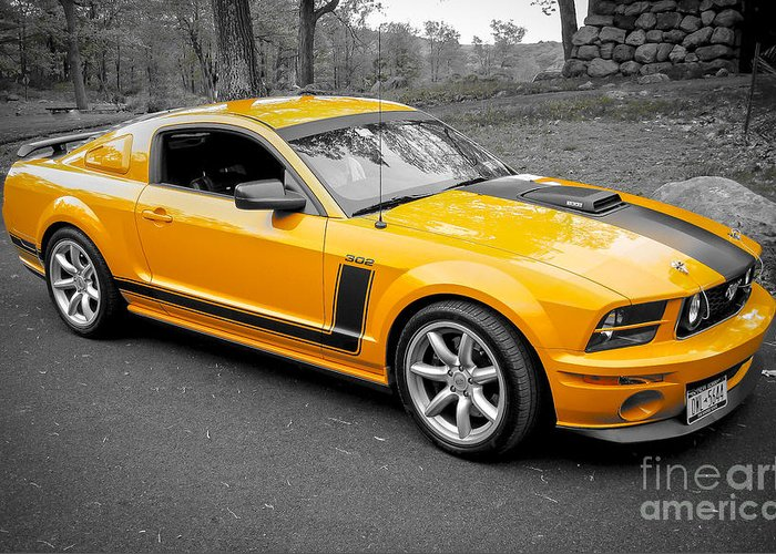 Car Greeting Card featuring the photograph 2008 Ford Mustang Rausch Supercharged by Chuck Spang
