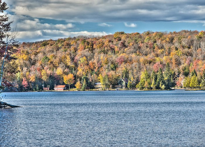201410020-036d1 Greeting Card featuring the photograph 201410020-036d1 Autumn Forest North Shore Hdr1 2x3 by Alan Tonnesen