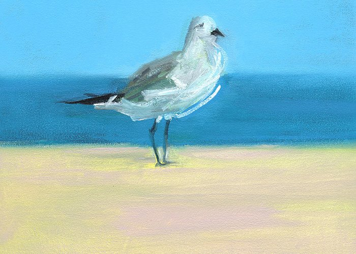Shore Birds Greeting Cards