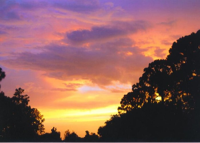 Multi Colors As Sun Sets Greeting Card featuring the photograph Sky Scape by Robert Floyd