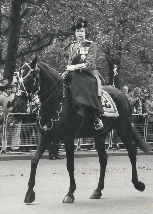 retro Images Archive Greeting Card featuring the photograph Trooping The Colour Ceremony by Retro Images Archive