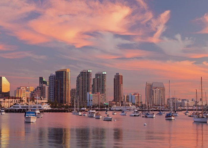 San Diego Harbor Cruise Greeting Cards